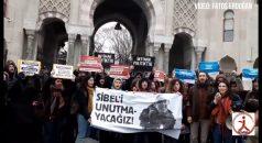 VİDEO HABER: Sibel'in katili kapitalizm